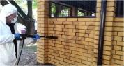 Usuwanie graffiti - elewacje, pomniki / Warszawa Centrum, Muranów, Wola